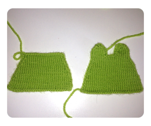 Frog Coin Purse after blocking
